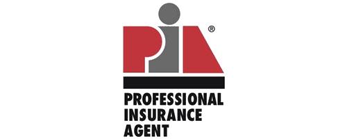 Professional Insurance Agent